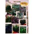 Набор Засолочный 11 трав